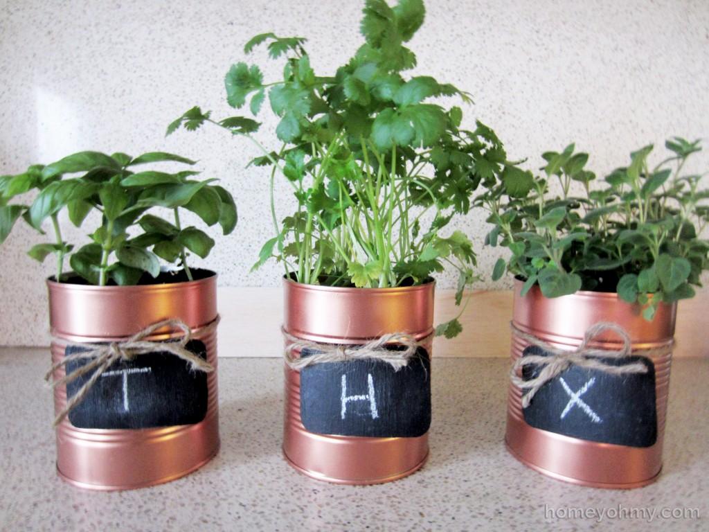 Tin Can Planters thx