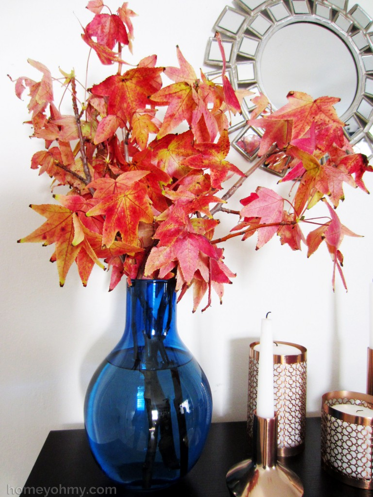 Liquidambar arrangement