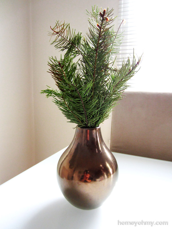 Evergreen in a vase