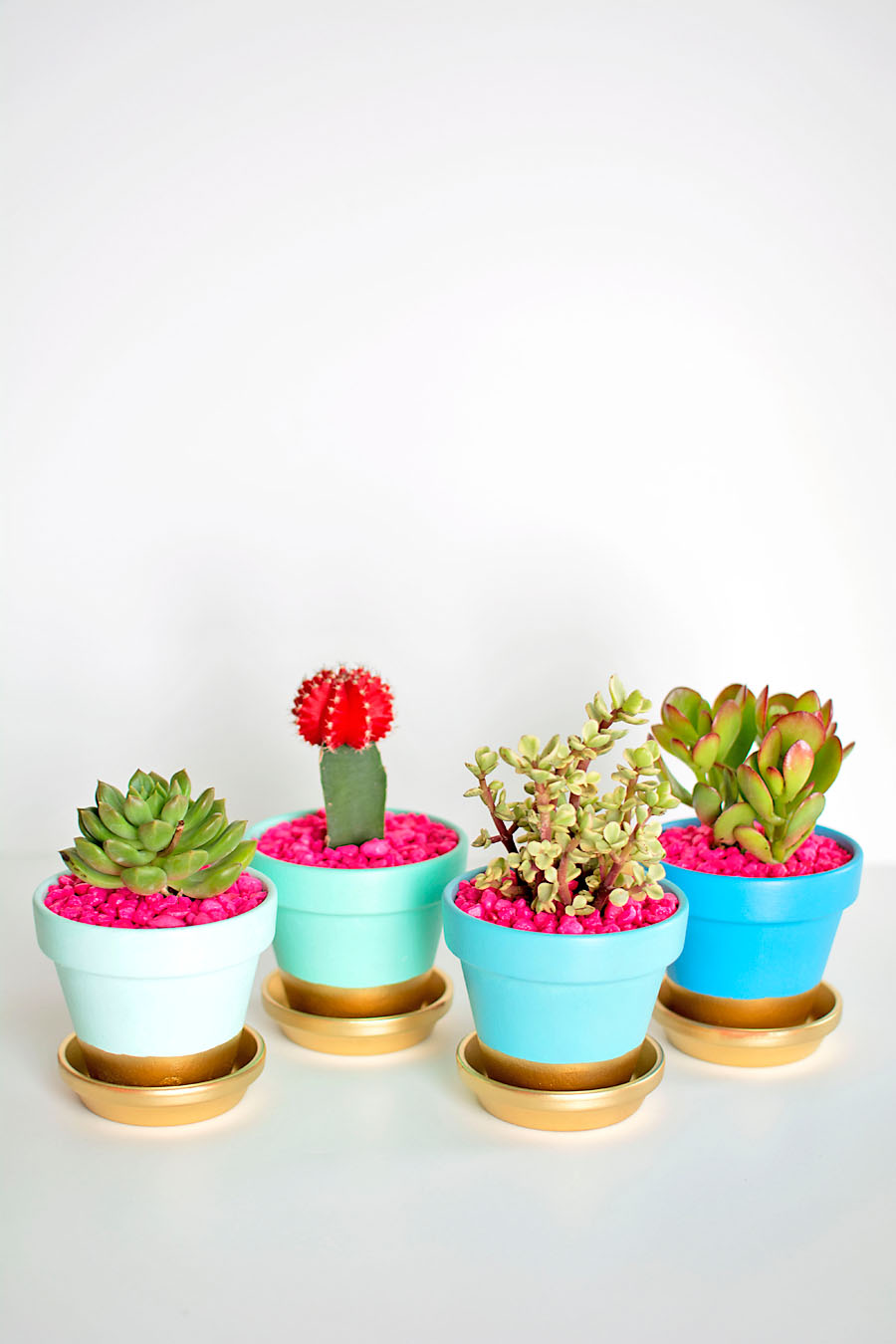 DIY Gold Dipped Plant Pots