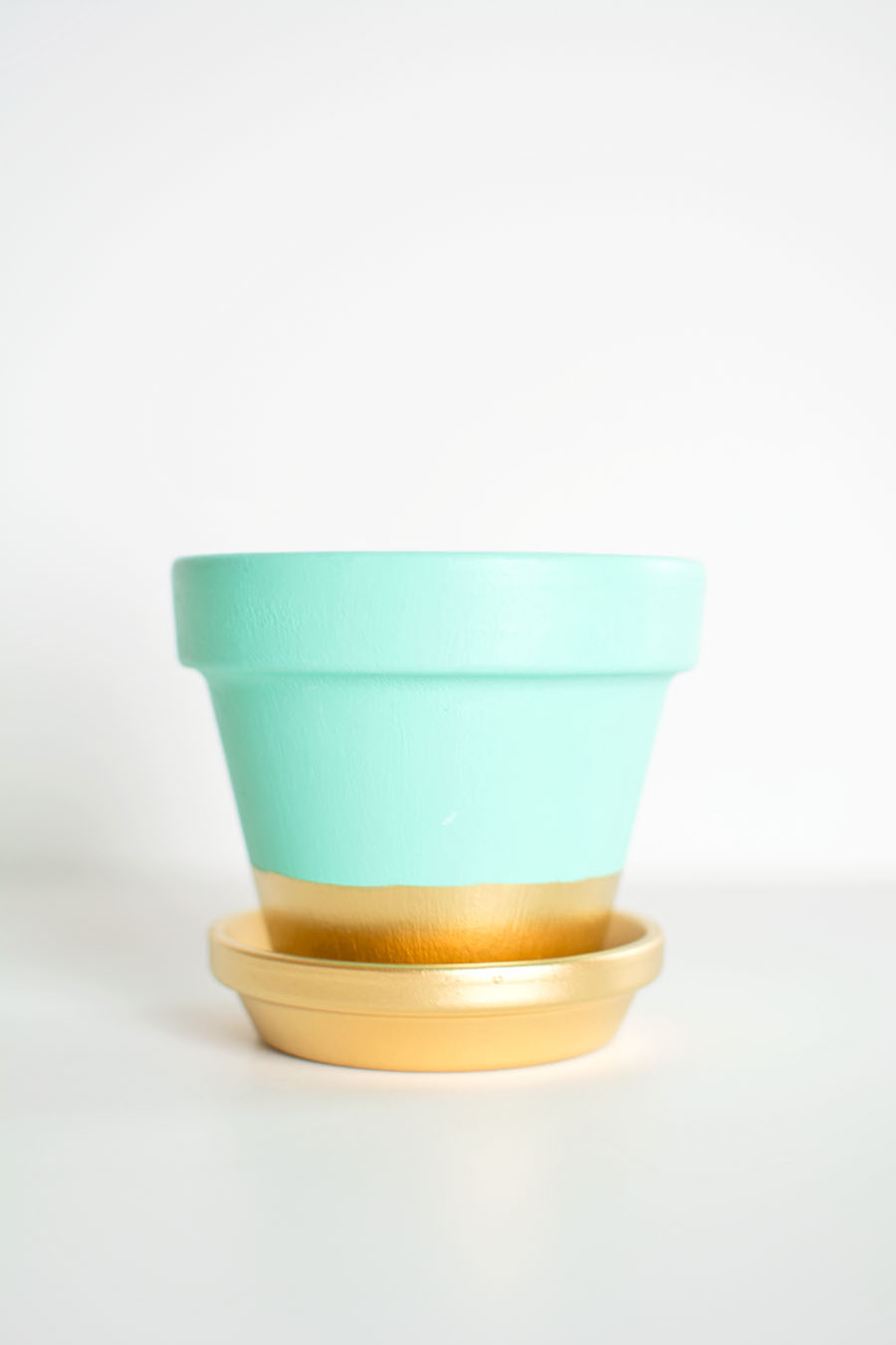 Gold dipped plant pot