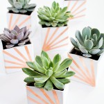 DIY Copper and White Succulent Planters