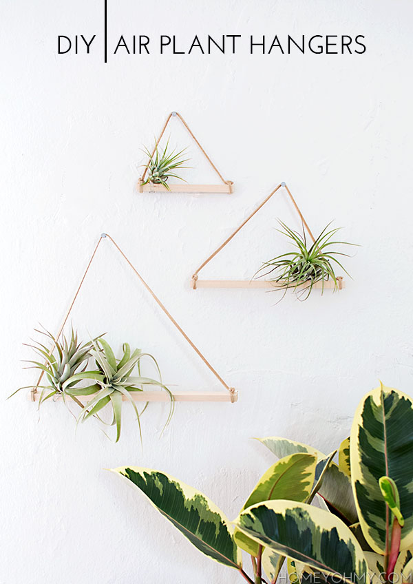 Diy Air Plant Hangers Homey Oh My
