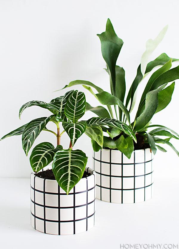 DIY Grid Planters