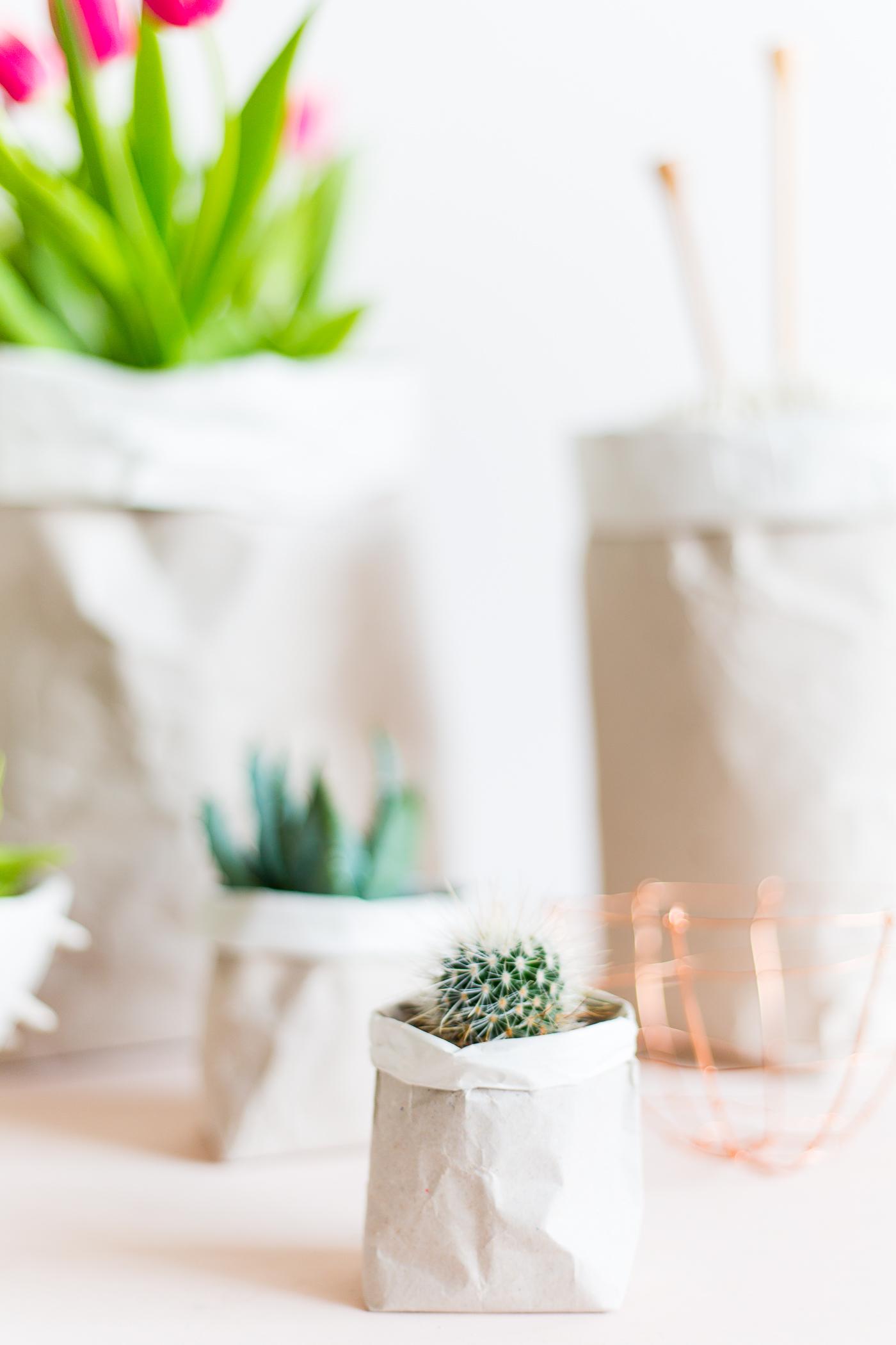 paper sack planter