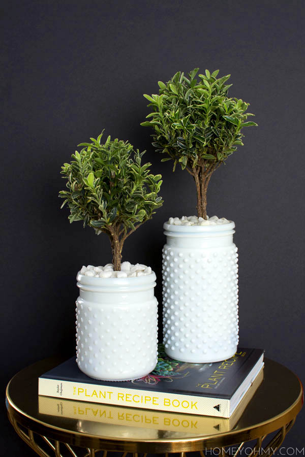Topiaries- Inspired by The Plant Recipe Book 2