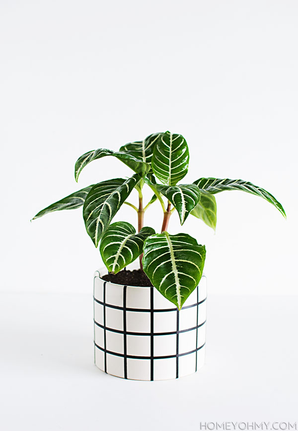 DIY - Grid Planter